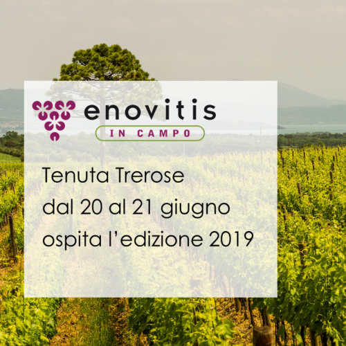 Enovitis in Campo 2019 at Trerose